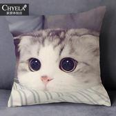 貓抱枕呆萌可愛寵物小貓咪狗狗動物圖案抱枕定制來圖定做照片沙發靠墊背