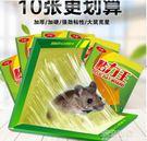 老鼠貼超強力黏鼠板抓捉老鼠膠藥捕鼠籠驅鼠...