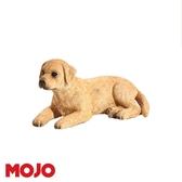 【Mojo Fun 動物星球頻道 獨家授權】 拉布拉多幼犬 387272
