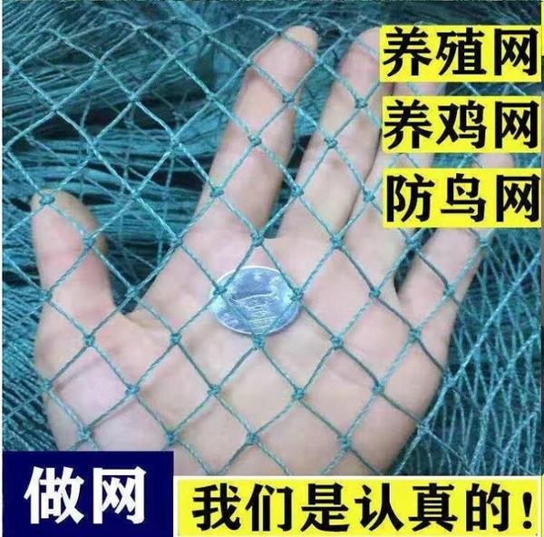 家禽養殖尼龍網防鳥網