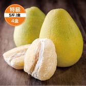 【鮮食優多】清泉 麻豆30年老欉特級文旦5斤裝4盒(好評預購中!!30年老欉,柚香多汁)