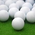 高爾夫球寵物玩具球練習