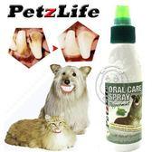 【 zoo寵物商城 】PetzLife《潔牙樂》天然潔牙噴劑4oz‧100%天然植物形成分