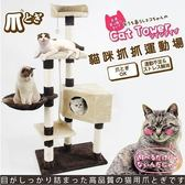 *WANG*【下殺含運】寵喵樂-日本大奶凍捲 貓跳台玩樂兼休憩 多功能可用 (AM507 )//補貨中