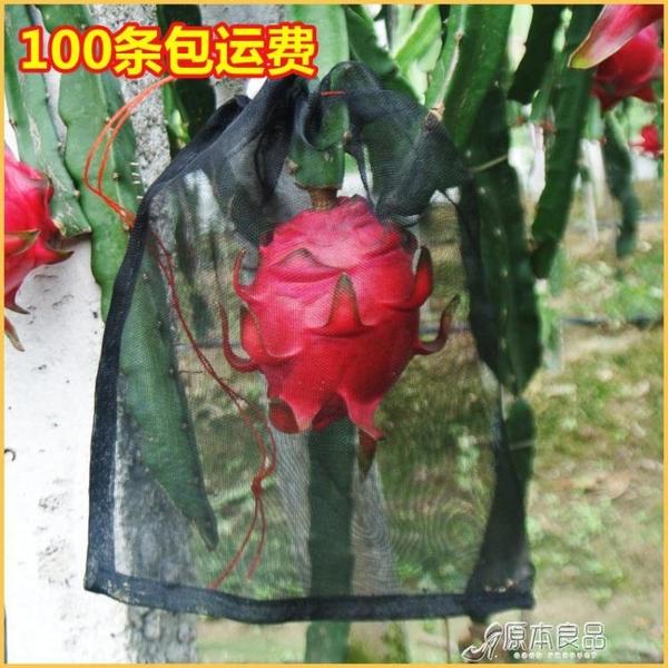 防蟲果網 水果防鳥防果蠅防蟲網袋火龍果專用套袋套果袋【快速出貨】