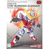 SD鋼彈 BANDAI 組裝模型 EX-STANDARD系列 TRY燃燒鋼彈 011