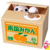 Hamee 日本正版 惡作劇BANK 療癒系 偷錢貓咪 紙箱動物偷錢 存錢筒 儲金箱 (蜜柑) 376398