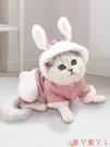 寵物衣服 貓咪衣服小貓暹羅貓貓寵物的防掉毛幼貓可愛新年布偶貓四腳春秋款 愛丫 免運
