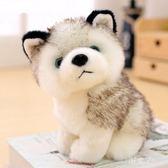 狗狗女孩禮物抱抱大號小型毛絨玩具個性玩偶大型搞怪狗子二軟體哈30cm KV385  『小美日記』