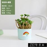 風北歐裝飾擺件仿真植物仙人掌盆栽室內假多肉綠植小桌面11-14【雙十一狂歡】