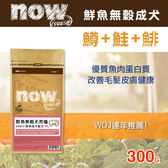 【毛麻吉寵物舖】Now! 鮮魚無穀天然糧成犬配方-300克 狗飼料/WDJ推薦/狗糧