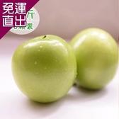 饗果樂 燕巢牛奶蜜棗(5台斤/16粒) E09400017【免運直出】