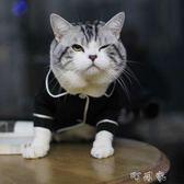 潮牌小型貓咪狗衣服春夏薄款潮牌泰迪英短法式睡衣兩腳寵物衣服潮 盯目家