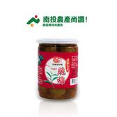 信義脆梅(清香烏龍) 產期限定 南投精選梅子系列