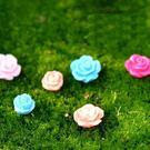 CARMO迷你玫瑰花多肉微景觀(單入) 盆栽裝飾【A030024】