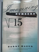 【書寶二手書T3/科學_NQW】Imagining Numbers-Particularly the Square Ro