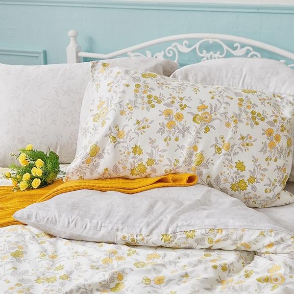 床包 / 雙人【南法蝶花】含兩件枕套  60支天絲  戀家小舖台灣製AAU201
