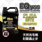 *KING WANG*【美國EQyss】...