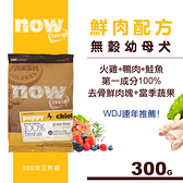 【SofyDOG】Now! 鮮肉無穀天然糧 幼犬配方(100克三件組)狗飼料 狗糧