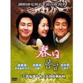 韓劇 - 春日DVD (全26集) 趙演成/高賢貞/池珍熙
