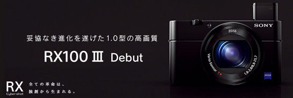 【震博】Sony RX100M3(台灣索尼公司貨;分期0利率)送保貼清潔組 NP-BX1原廠電池