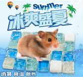 降溫屋 專用夏季夏天小倉鼠降溫用品冰床散熱板隔熱片消暑窩冰屋涼席鋁板 igo 第六空間