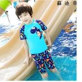 兒童泳衣男童泳褲小恐龍游泳衣寶寶