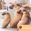 小寵物狗狗抱枕可愛玩偶毛絨玩具動物布娃娃公仔【小獅子】