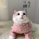 IG寵物狗狗貓貓夏季薄款可愛幼貓小奶貓布偶貓咪衣服夏裝防掉毛【小狮子】