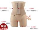 依芝鎂-F176塑身褲家輝排勾高腰五分褲強效收腹半身產後塑身褲,售價650元