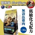 *KING WANG*澳洲Cat Glo...