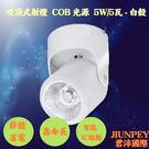 led吸頂燈 安裝於天花板 COB光源 5W/5瓦 明裝3001 免運費 廠家直送 (白殼)