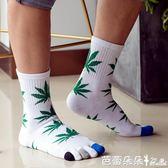 五指襪男 楓葉款秋冬分腳趾厚全純棉保暖腳趾襪吸濕防臭五指襪男士襪 芭蕾朵朵