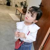 女童襯衫長袖韓版2019新款洋氣兒童寶寶襯衣上衣白色荷葉領娃娃衫Mandyc