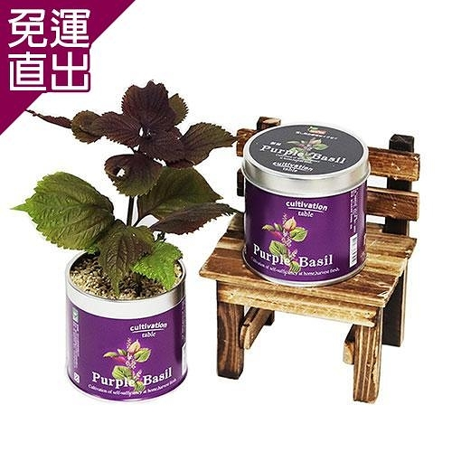 迎光 Cultivation Table栽培罐紫蘇【免運直出】