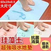 [限宅配] 硅藻土地墊 珪藻土地墊 矽藻土 地墊 浴室 腳踏墊 地毯 吸水墊【RS647】