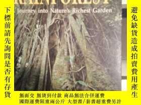 二手書博民逛書店rainforest罕見a journey into nature s richesr garden Y114