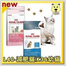 【ZOO寵物樂園】法國皇家K36幼貓 L...