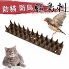 【JIS】N185 買一送一 驅鳥刺 防...