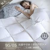 【預購】HOYACASA波蘭輕量級奢華90/10鵝絨被(加大8x7尺)