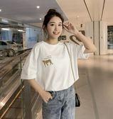 特賣款不退換百搭款短袖上衣M-4XL/32392/新款韓版圓領豹子印花短袖T恤女學生bf寬松體恤衫上衣