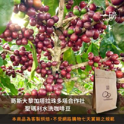 【咖啡綠商號】哥斯大黎加塔拉珠多塔合作社聖瑪利亞水洗咖啡豆(一磅)