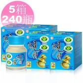 ◆最新期限2022年3月◆【台糖原味蜆精】62ml*5箱共240瓶 護肝 抗疲勞 國家健康食品雙認證