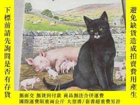 二手書博民逛書店Moses罕見the Kitten:小貓摩西Y212829
