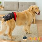 寵物生理褲大狗中型大型犬寵物姨媽巾衛生月經安全褲【淘嘟嘟】