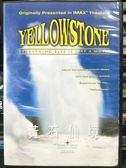 影音專賣店-P08-316-正版DVD-紀錄【黃石仙境】-