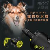 【澳洲進口】bigboi MINI 寵物單馬達吹風機 低噪音 寵物吹水機 吹風機 汽機車可用 寵物