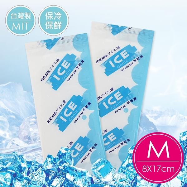 保冷袋 台灣專利冰寶出口日本(買十送一)保冷利器-中冰寶8*17冰磚母乳冷凍袋冰敷 母乳袋【EC0003】