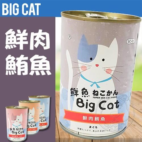【ZOO寵物樂園】BigCAT鮮魚》大貓綜合營養罐400g (4種口味)