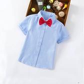 男童白襯衫短袖春夏季襯衣兒童全棉半袖藍色純色小學生表演校服